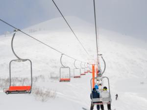 Niseko Ski Pass
